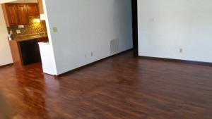 apartment living room in Belleville IL